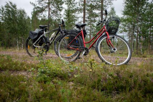 035-hemester med cykel