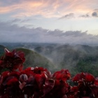 19-f-56882-dimma-over-Chocolate-hills
